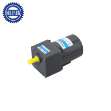 220 Volt Electric Low Rpm AC Gear Motor with Brake 60W