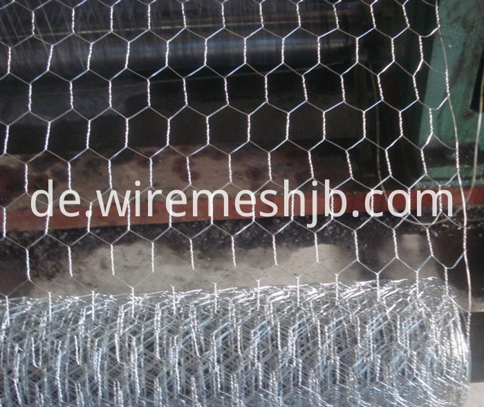 Galvanized Chicken Wire