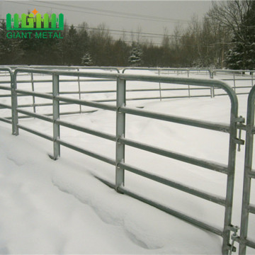 galvanized+pipe+horse+fence+panel