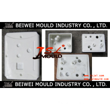 Plastic Injection Battery Cover Mould