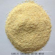 A Grade Dried Garlic Granule