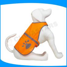 Собака с воротником с высокой видимостью