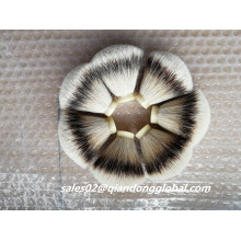Fan Shape Natural Silvertip Badger Hair Knots