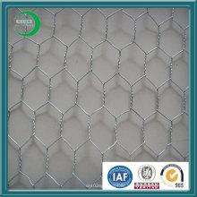 Maille métallique hexagonale revêtue de PVC (xy-04)
