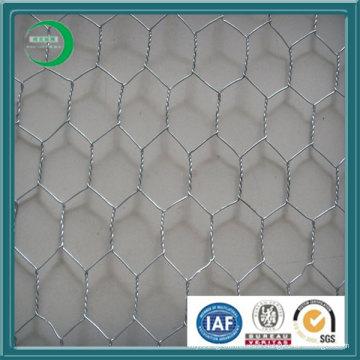 Galvanisé en poudre en fil hexagonal en acier (H01)