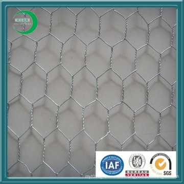 Galvanized Chicken Hexagonal Wire Mesh in Stock (H01)