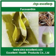 Extrato de Kelp (fucoxantina)