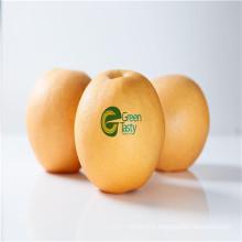 Nouveaux produits de pommes de terre congelées IQF