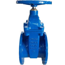 DIN F4 Rubber Wedge Valve