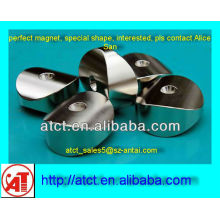 NdFeB Special shaped motor magnet