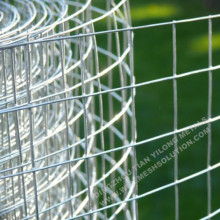 Welded Wire Fence Galvanized Against Rust
