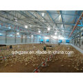 Steel Poultry House/Chicken House with Equipment (PCH-14323)