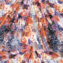 Wholesale High Quality Digital Print Silk Fabric (XF-0035)