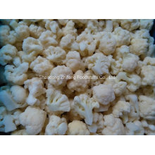 Couve-flor congelada chinesa de IQF para exportar