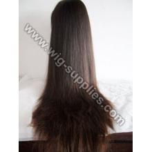 Silky Straight Women's Wig