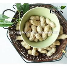 Coated Peanut, Peanut Inshells For Sale