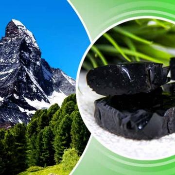Acide fulvique pur naturel 10%-50% poudre d'extrait de Shilajit