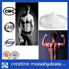 CAS 6020-87-7 Sports Nutrition Wholesale Creatine Monohydrate Powder