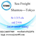 Shantou Port Sea Freight Shipping para Tóquio