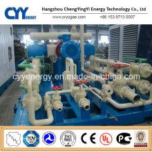CNG25 Skid-Mounted Lcng CNG LNG Kombi-Tankstelle