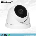 Kamera IP H.265 2.0MP IR Dome Video Pengawasan