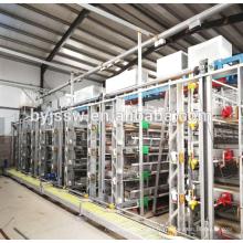 Poulet automatique de conception d'équipement de ferme avicole à grande échelle de l'Iran