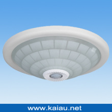 LED Ceiling Light (KA-C-302G)