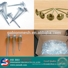 China galvanized Umbrella head roofing nail smooth