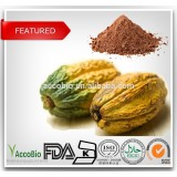 100% Natural Cocoa extract/10% 20% Theobromine/Cocoa polyphenols