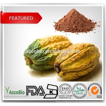 Extrato 100% natural de cacau / 10% 20% polifenóis de teobromina / cacau