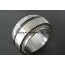Germany Cylindrical Roller Bearing SL06038 SL06032