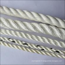 Corde de multifilament de polyester avec le prix concurrentiel
