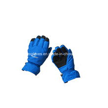 Sport Glove-Ski Glove-Waterproof Glove-Safety Glove-Protective Glove-Gloves