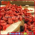 Où trouver des baies de goji en train de cultiver des baies de goji poudre de baies de goji