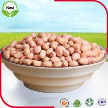 Kernels de amendoim com pele vermelha 50/60 60/70