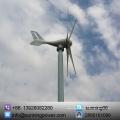 Sunning 300W 12 / 24V eje horizontal aerogenerador