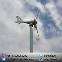 Exposição ao sol 300W 12 / 24V Horizontal Eixo Tipo Turbina Eólica
