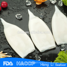 Frozen seafood best illex argentinus squid fish