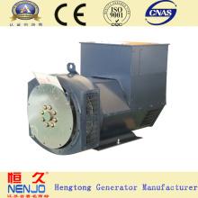 Dinamómetro eléctrico sin cepillo eléctrico sin cepillo de la marca de fábrica de NENJO 6.5KW / 8KVA