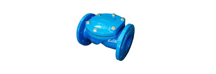 check valve1