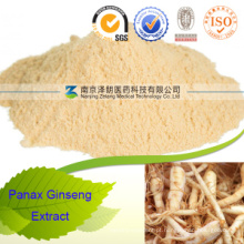 Panax Ginseng Root Extract Fabricantes