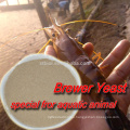 Alibaba Supplier Brewers Dried Yeast For Animal Feeds