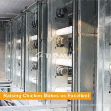 Sistema automático de eliminación de estiércol de jaula de pollo con capa