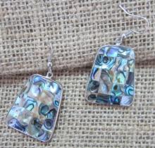 Abalone Shell Earring (ER121014)