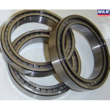 Cylindrical Roller Bearing Nu214e