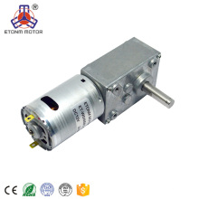 motor cc de engranaje de gusano eléctrico pequeño y silencioso 24v