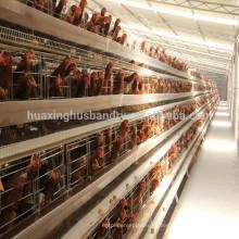 Jaulas galvanizadas en caliente para capas gallinas capa jaula