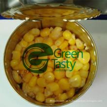 Légumes grains de maïs en conserve