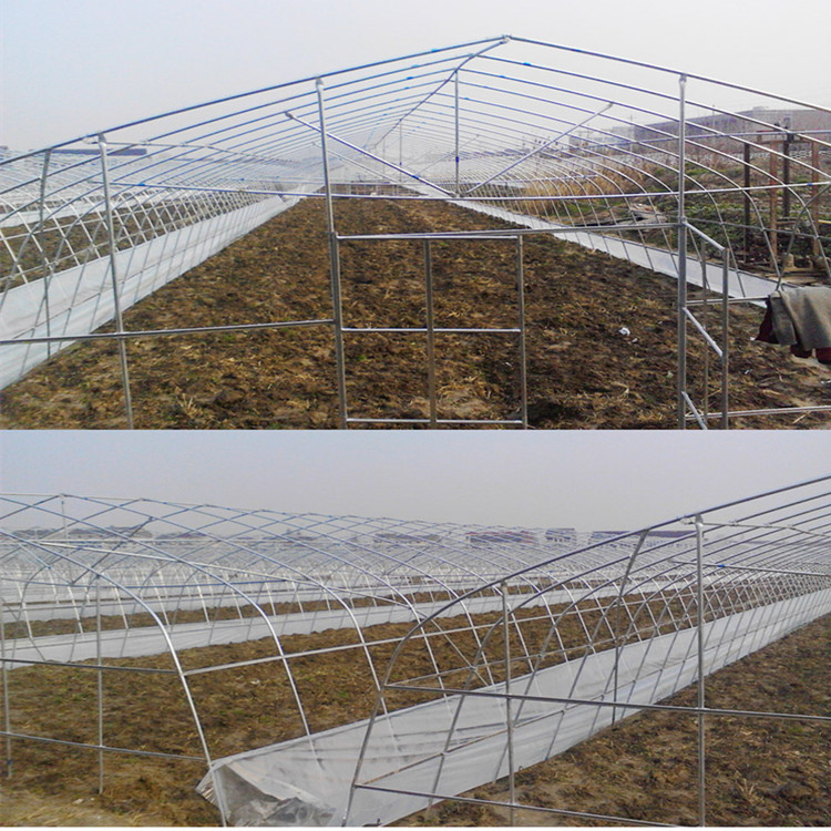 Single+Span+Plastic+Film+Greenhouse+For+Plant