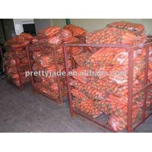 Chinesische Ernte neue frische Karotten